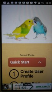 birdbuddy home page quick start