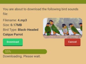 birdbuddy bird sound audio file download progress