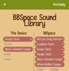 birdbuddy bird sound audio file downloaded
