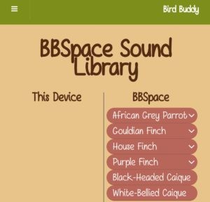 birdbuddy bird sound song chirp library